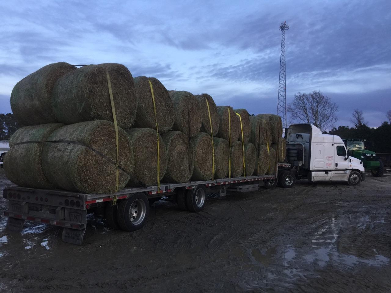 Hay Shipping